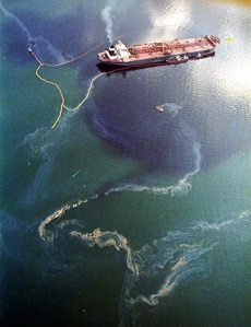 The Exxon-Valdez Oil Spill