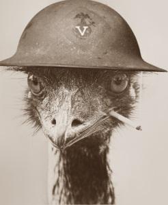 Emu soldier