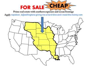 Louisiana Purchase Ad - For Sale - CHEAP!